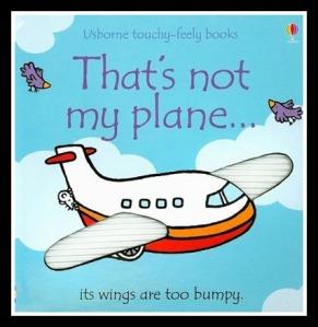 thatsnotmyplanebook